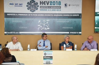 Hepatitis E table discussion