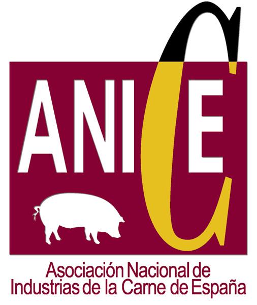 Logo ANICE