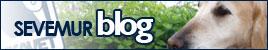 SEVEMUR Blog